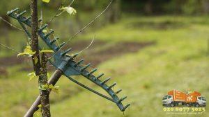 A garden rake
